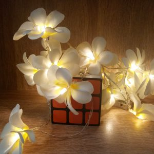 Lampu LED Bunga Kamboja